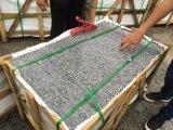 Nuestra propia cantera gris claro precio competitivo G603 Granito