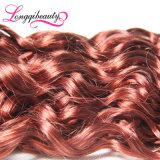Da venda por atacado humana do Virgin de dois tons cabelo Curly malaio louro