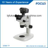 Microscópio de lâmpada de régua de Digitas da qualidade superior para a microscopia da fibra
