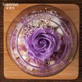 Verse Bloemen van de Fles van de Wens van Ivenran de Lichtgevende voor de Creatieve Gift van de Decoratie van de Vakantie
