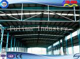 De hete Bouw van de Structuur van het Staal van de Verkoop voor Fabriek (flm-003)