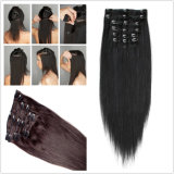 Hair Extension (BHF-CP005)에 100%Remy Human Hair Clip