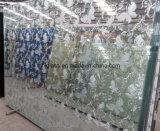 Fornire ogni genere di vetro decorativo, il vetro di arte, vetro della priorità bassa