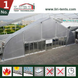 Шатер ангара структуры шатра шатёр TFS алюминия изогнутый PVC