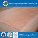 Madera contrachapada de Okoume, madera contrachapada de Bintangor, madera contrachapada comercial
