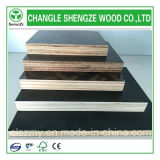 Peuplier Core 4X8 Feet Black Film Faced Plywood