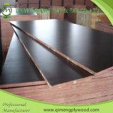 Uma madeira compensada quente da construção da imprensa 1220X2440X18mm do tempo com colagem impermeável