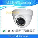 Cámara al aire libre de la red del globo del ojo de Dahua 2MP IR (IPC-HDW4231M)