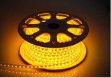 CE EMC LVD RoHS deux ans de garantie, lumière flexible chaude de corde du blanc SMD DEL (HVSMD3528-60, HVSMD3528-30)