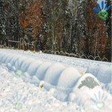 Coperchio materiale non tessuto resistente al gelo di agricoltura di inverno