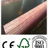 Le noir/Brown/film antidérapage ont fait face au contre-plaqué avec le faisceau de peuplier/bois dur pour la construction (HB002)