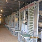 Bonne qualité de petits oiseaux de matériel automatique de volaille élevant le système de cage avec ISO9001