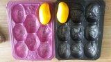 China hizo la muestra libre que muchas clasifican y que colorean las bandejas disponibles de los PP del plástico para las bandejas de empaquetado de la fruta y verdura fresca