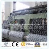 Hot DIP Galvanizado Hexagonal Wire Mesh / Electro Galvanizado Hexagonal Wire Netting