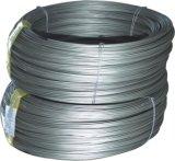 Câble métallique enduit en plastique d'acier inoxydable