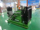 CE ISO Homologaciones 600kw de alta calidad Licuado Generador de Gas Natural Metano GLP GNL GNC para central grande