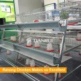 Pollastra automatica della gabbia di batteria dell'azienda agricola della pollastra che alza la gabbia del pollo