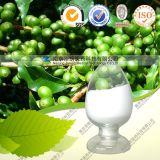 Extracto verde del grano de café (ácido Chlorogenic del 50%)