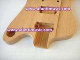 Ebenholz Fretboard/elektrische Gitarren-Installationssatz des Firebird Art-Installationssatz-/Afanti (AFB-105K)