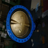 Doppeltes Flanged Butterfly Valves mit Extention Spindle