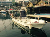 中国Aqualand 19feet 23feet 5.8m 7mのガラス繊維の漁船(230)
