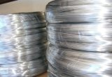 Bobina di titanio superiore di prezzi bassi