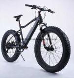 脂肪質の電気バイク