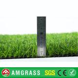 25mmの高さの信じられないい価格の自然な見る草の床そして人工的な泥炭
