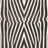 Pellicola idrografica di immersione Hydrographics P2094 di stampa di trasferimento dell'acqua delle pellicole di stampa dell'acqua della pellicola della pelle animale della pelle della zebra di larghezza di Tsautop 1m/0.5m idro