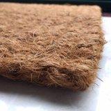 Couvre-tapis de porte bienvenu d'étage de fibre de noix de coco de fibre de coco de cocos d'entrée de cacao de Cocos extérieurs de Koko