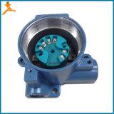 D248 PT100 dem Übermittler zur Temperatur-4-20mA