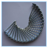 De elektro Gegalvaniseerde Spijker van het Dakwerk van de Steel van de Paraplu Hoofd Vlotte Duidelijke