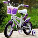 Baby-Schleife des Facory Kind-Fahrrad-2017/des Fahrrades/Fahrrad-Kind-Fahrrad (LY-W-0129)