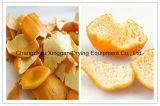 オレンジの皮のためのベルトの乾燥装置