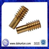 Custom Small Brass / Plastic Worm Gear Shaft
