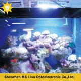 Luz programable del acuario de las ventas directas LED de la fábrica para el espectro completo del filón coralino