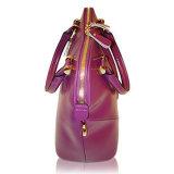 Klassische glänzende Entwürfe der Handtaschen mit wahlweise freigestellten Brücken für Zubehör der Frauen
