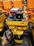 Werkstatt bearbeitet Gerät die 10 Tonnen-elektrische Kettenhebevorrichtung