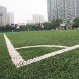 Appelgroen Kunstmatig Gras voor het Hof van het Voetbal