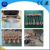 Calentador de inducción modificado para requisitos particulares para la cadena de producción de la forja del metal