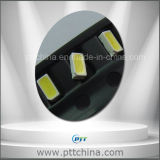 0.1W 3014 SMD LED, blanco fresco 6000-7000k, 30mA, 12-14-16lm