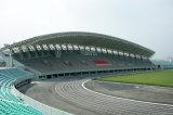 경기장을%s Design&Supply&Install 큰 직업적인 강철 Truss