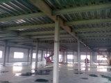 Gruppo di lavoro lungo della struttura d'acciaio della portata