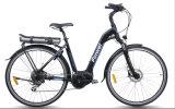 Tipo bicicleta eléctrica de la ciudad con la batería trasera del portador (TDB16Z)