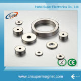 Forte magnete di anello del neodimio da vendere