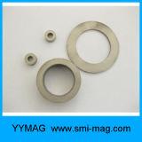 Magneten van de Ring van SmCo van het Kobalt van het Samarium van de zeldzame aarde de Permanente