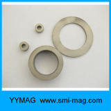 De Magneten van de Ring van het Kobalt van het samarium