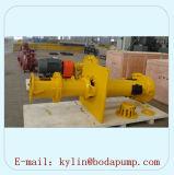 Pompe de carter de vidange verticale centrifuge industrielle de mine