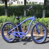 Ristarの熱いモデル雪の電気自転車Rseb-505