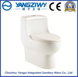 Siphonic Jet One Piece Toilet Bowl